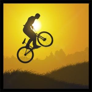 bicicleta ca simbol